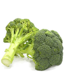 broccoli greaca